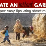 Create an Instant Garden with Sheet Mulching