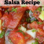 """I Can't Wait Any Longer"" Salsa Recipe"