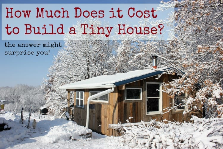 How much does it cost to build a tiny house homestead honey for Diy home building cost