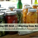 Off-Grid Living and Starting a Homestead from Scratch