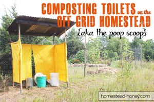 composting bucket toilet
