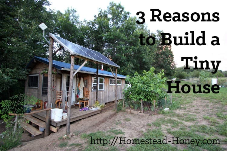 TIny houses are a popular trend, but are they really the best option for everyone? In this post, I'll share my top three reasons to build a tiny house. | Homestead Honey