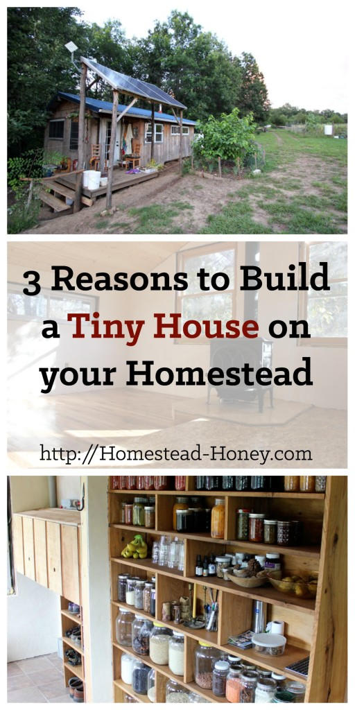 TIny houses are a popular trend, but are they really the best option for everyone? In this post, I'll share my top three reasons to build a tiny house.