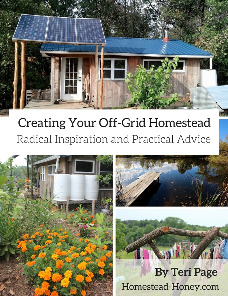 Creating Your Off-Grid Homestead: Radical Inspiration and Practical Advice, by Teri Page of Homestead-Honey.com