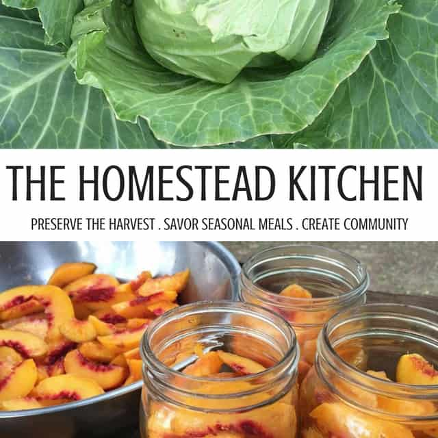 The Homestead Kitchen eCourse