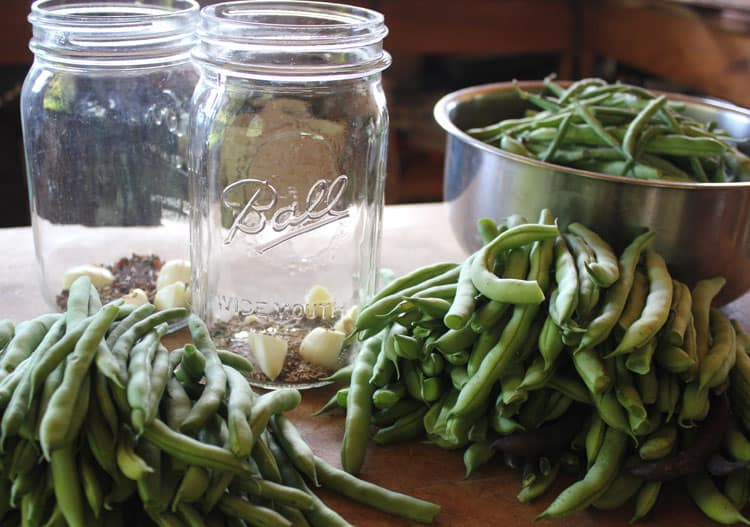 Green beans are a versatile crop to preserve for winter eating. Here are four ways to preserve green beans: Canning, Dehydrating, Fermenting, and Freezing. | Homestead Honey