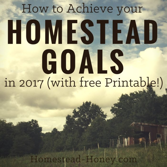 How to Achieve your Homesteading Goals in 2017