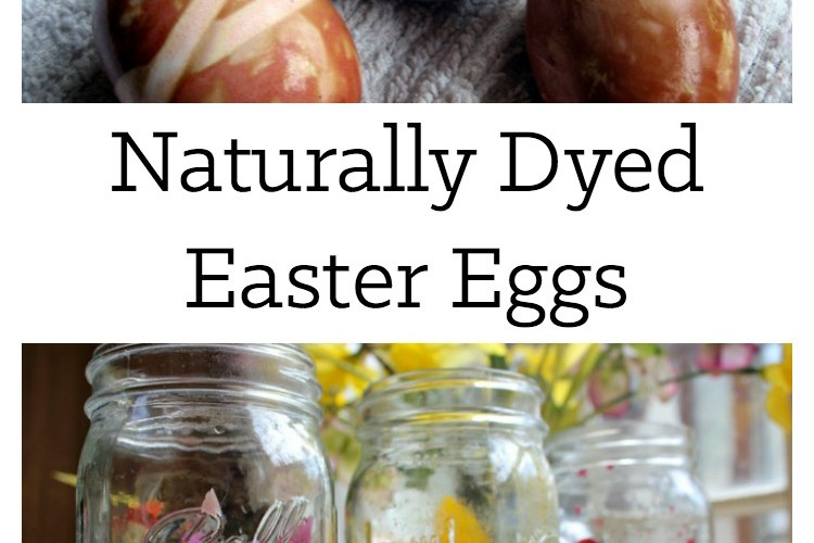 Using natural dyes to create beautiful Easter eggs is simple, quick, and can be done with ingredients already on hand! | Homestead Honey
