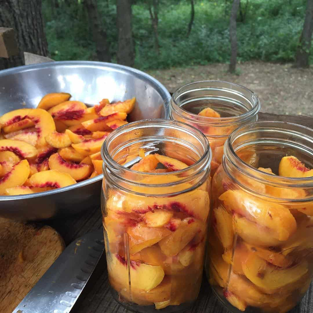 Preserving peaches for winter eating | Homestead Honey