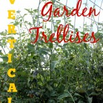 Garden Vertically with Trellises