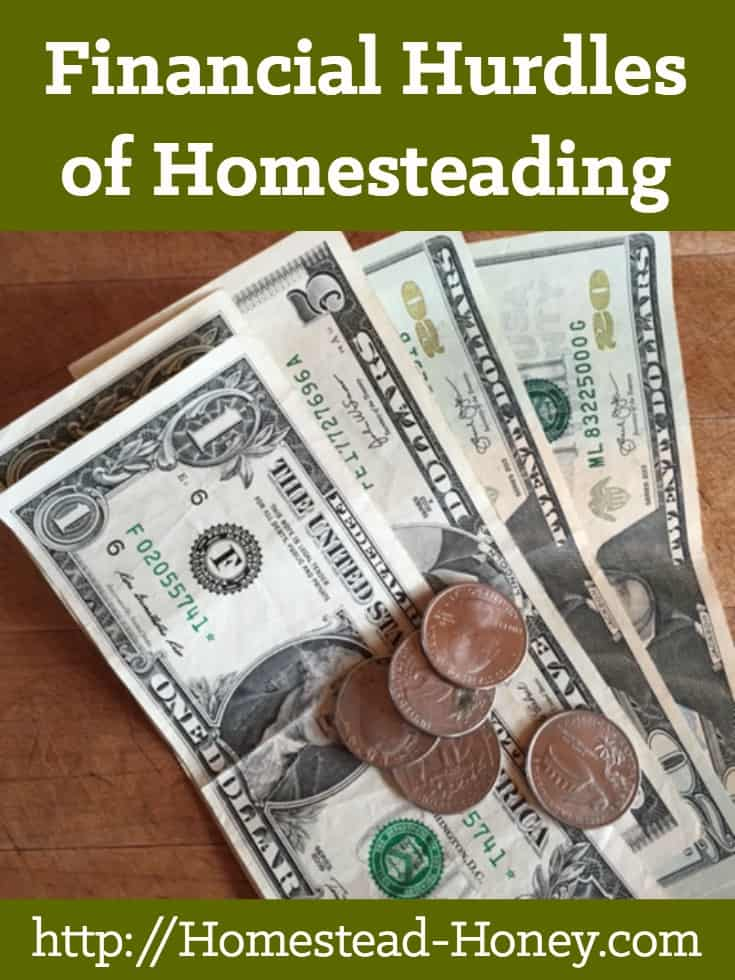 Homesteading can be a great way to live frugally and debt-free. But there are also very real, sometimes very large financial investments to begin homesteading. This post shares some of the financial hurdles to homesteading | Homestead Honey