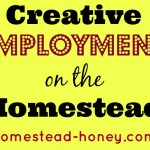 Financial Realities of Homesteading :: Creative Employment