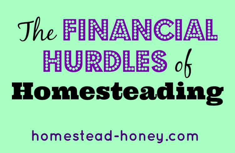 Financial Hurdles of Homesteading
