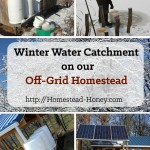 Winter Water on our Off-Grid Homestead