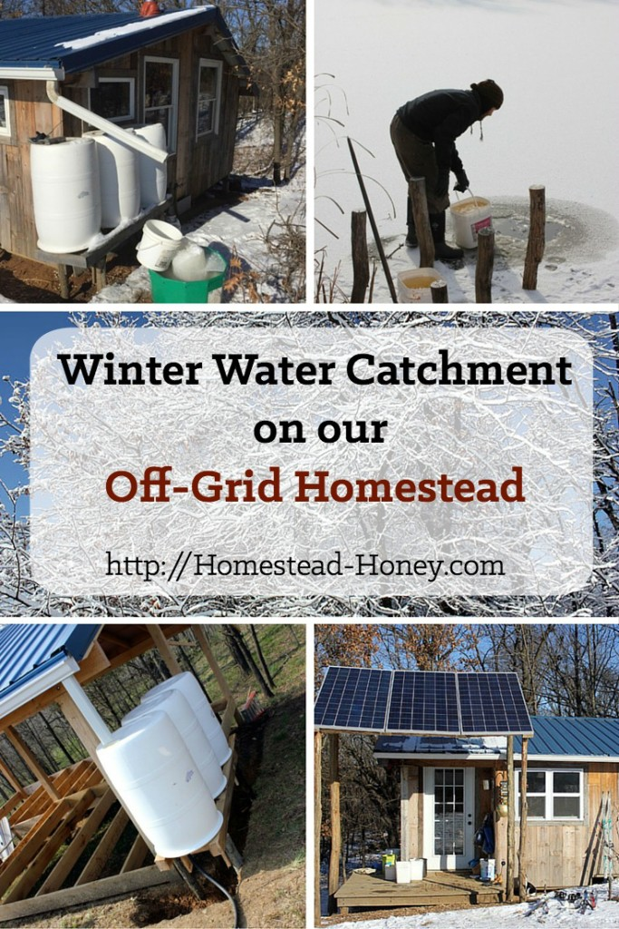 When freezing temperatures hit, how does an off-grid homestead catch water for drinking and cooking? In this post I'll share our experiments, trials, successes, and yes, a few failures! | Homestead Honey