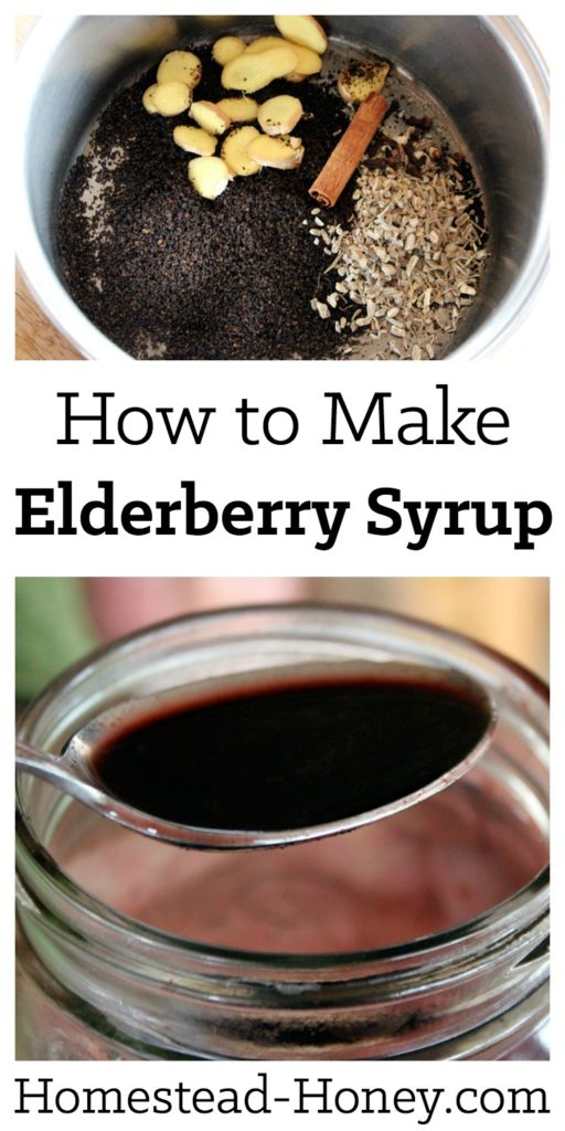 Elderberry Syrup Recipe |  Learn how to make a soothing elderberry syrup from elderberry powder or fresh berries, raw honey, ginger and echinacea with this easy tutorial. It has so many health benefits! Drink it to strengthen your immune system and relief symptoms of a cold  | Homestead Honey #diy #remedies