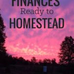 Getting Your Finances Ready to Homestead