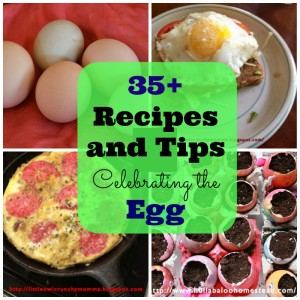 35+ Recipes and Tips to Celebrate the Egg