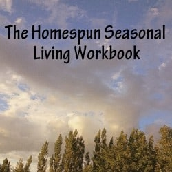 Homespun Seasonal Living workbook
