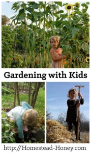 A lifelong love of growing food can start in the garden when kids are very young. Read on for my very best tips on how to make gardening with children a fun and productive experience for all! | Homestead Honey