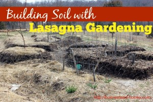 Build soil in your garden with the Lasagna gardening method | Homestead Honey