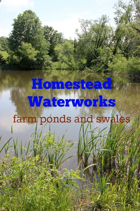 Hometead Waterworks | Homestead Honey