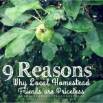 9 Reasons Why Local Homestead Friends are Priceless