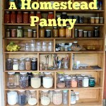 A Homestead Pantry
