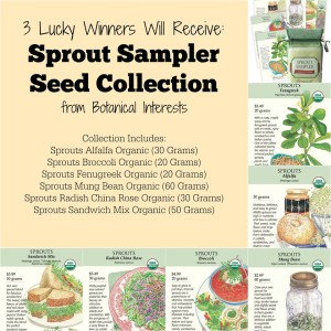 Sprouts giveaway from Botanical Interests