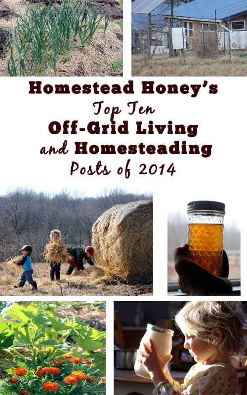 Top Homesteading and Off-Grid Living posts of 2014