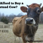 Can I Afford to Buy a Family Milk Cow?