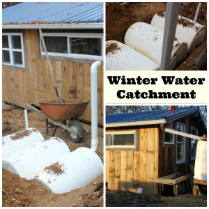Winter water catchment options for your homestead | Homestead Honey