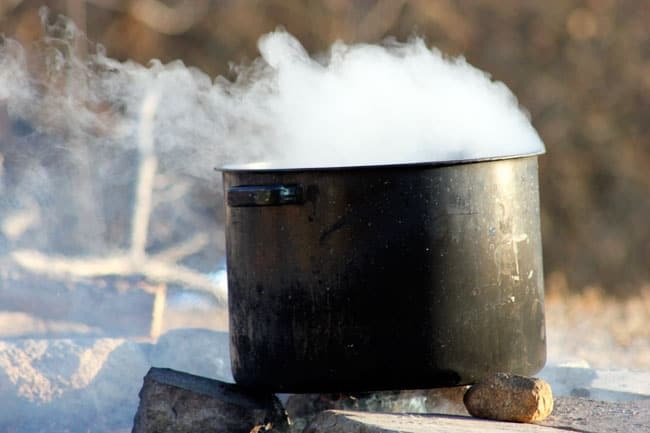 Black Walnut sap boiling down to make syrup. Black Walnuts are just one backyard tree that you can tap to make syrup! | Homestead Honey