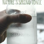 Tree Sap: Nature's Spring Tonic
