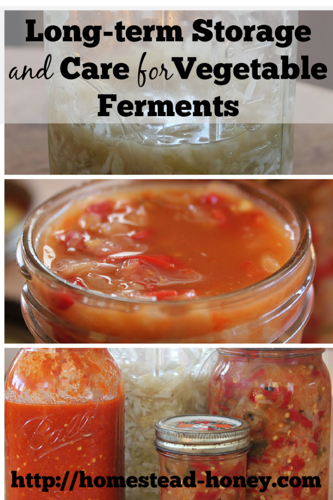 The best ways to care for and store your homemade vegetable ferments | Homestead Honey
