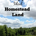 Finding your Ideal Homestead Land