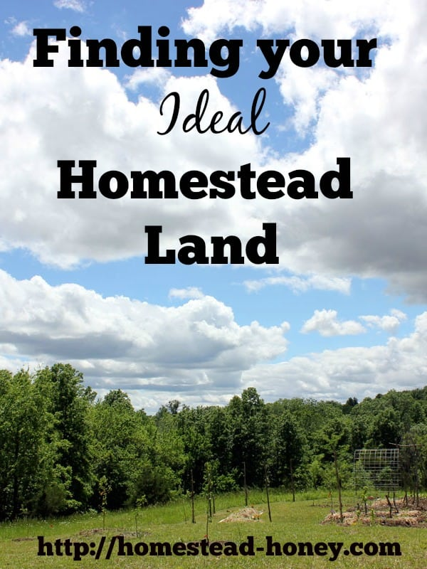 These simple questions will give you a crystal clear picture of YOUR ideal homestead land. | Homestead Honey