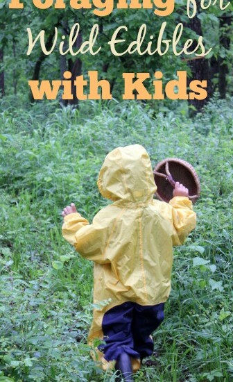 TIps for have a great experiences foraging for wild edibles with kids | Homestead Honey