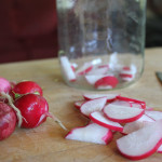 Lacto-Fermented Radishes Recipe