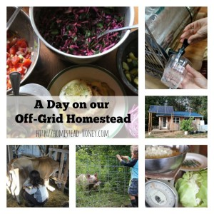 "A Day in the life of our Off-Grid homesteading family. Check out all of the posts in this series to see how homesteaders across the US and Canada spend their ""day in a life."" 