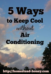 5 ways to keep cool this summer, without air conditioning! | Homestead Honey