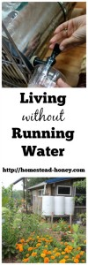 While we create our off-grid homestead from scratch, we live without running water. Here's how we make it work for our family! | Homestead Honey