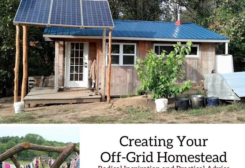 Creating Your Off-Grid Homestead by Teri Page of Homestead-Honey.com