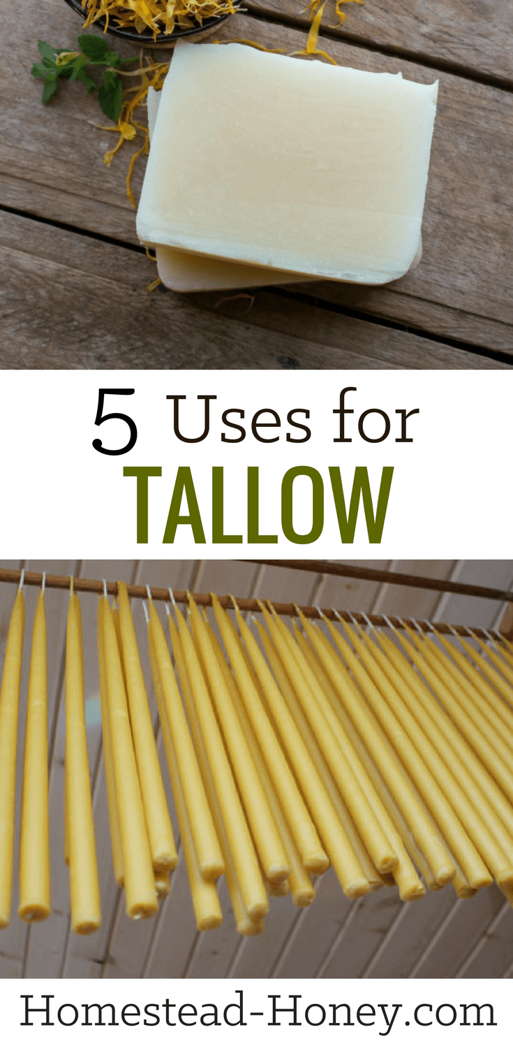 5 Uses For Tallow | I Tallow is saturated beef fat you'll want to keep stocked in your homestead pantry for its countless uses. Apart from cooking, think homemade skincare products and cosmetics, candle - or soapmaking. Here are my five favorite ways to use tallow! | Homestead Honey #soapmaking #candlemaking