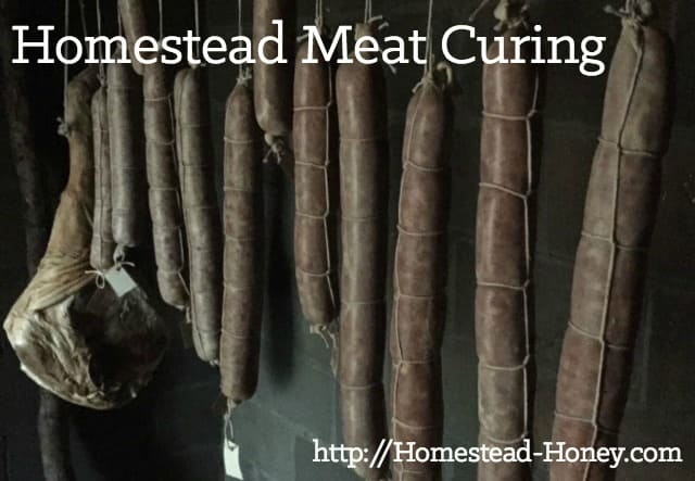 Homestead meat curing uses traditional methods to add flavor and preserve meat. if you raise meat, it's a great skill to add to your homesteading skillset! | Homestead Honey