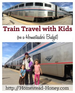 Traveling by train with kids is a fun and affordable way to see the country | Homestead Honey