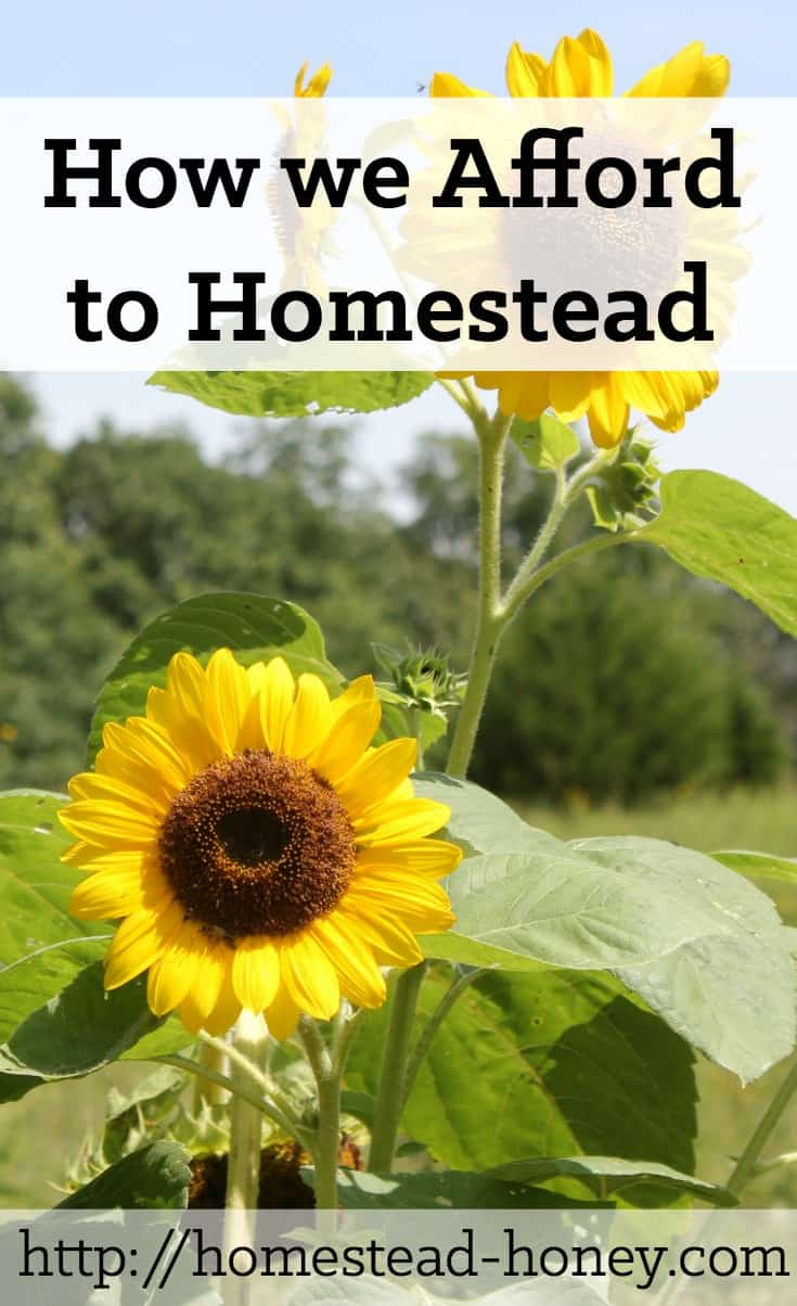 How we afford to homestead (on less than one income) is a combination of three factors: Avoiding debt, reducing expenses, and creating a diverse income stream | Homestead Honey