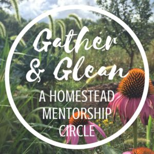 Gather & Glean: A Homestead Mentorship Circle for Women