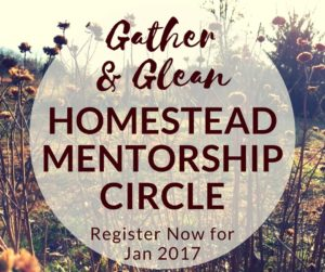 Gather & Glean Homestead Mentorship Circle for Women