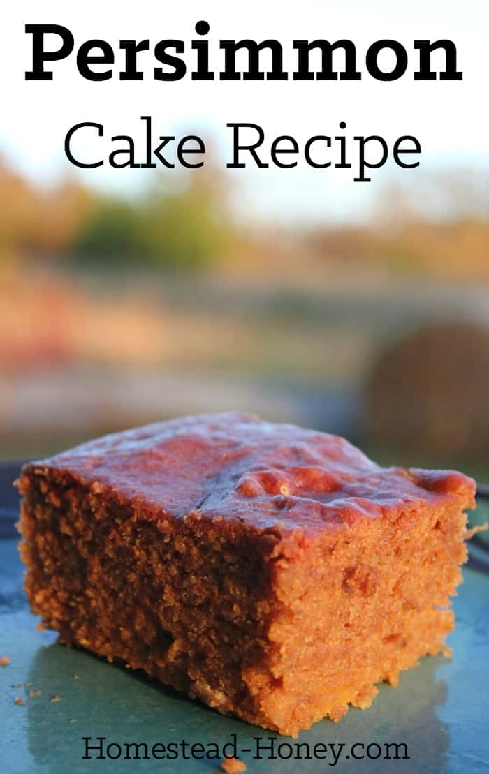 Delicious, moist, and lightly spiced, this easy persimmon cake recipe will make an amazing brunch addition, or a unique fall or holiday dessert. | Homestead Honey #fallbaking #cakerecipes